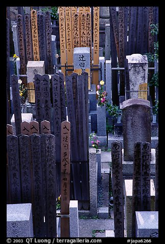 Burying grounds in courtyard. Kyoto, Japan