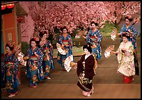 Miyako Odori (cherry blossom dance) performed at the Gion Kobu Kaburen-jo theatre. Kyoto, Japan ( color)
