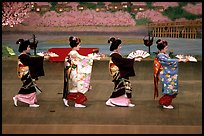 Maiko (apprentice Geisha) dress elaborately to perform the Miyako Odori (cherry blossom dance). Kyoto, Japan ( color)