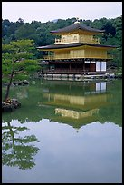 Golden pavilion, Kinkaku-ji Temple. Kyoto, Japan ( color)