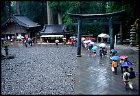 Tori in Tosho-gu Shrine on a rainy day. Nikko, Japan