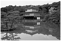 Golden pavilion, Kinkaku-ji Temple. Kyoto, Japan ( black and white)