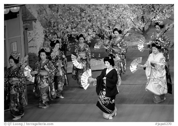 Miyako Odori (cherry blossom dance) performed at the Gion Kobu Kaburen-jo theatre. Kyoto, Japan (black and white)