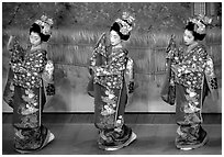Maiko (apprentice Geisha) dress elaborately to perform the Miyako Odori (cherry blossom dance). Kyoto, Japan (black and white)
