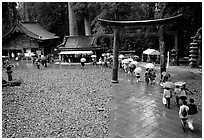 Tori in Tosho-gu Shrine on a rainy day. Nikko, Japan ( black and white)