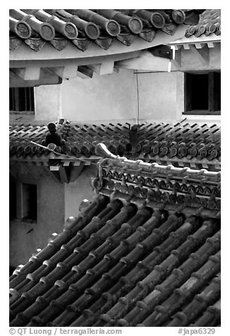 Roofs and walls inside the castle. Himeji, Japan (black and white)