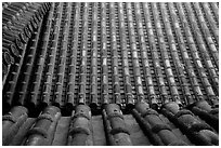 Roof detail. Himeji, Japan (black and white)