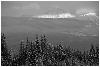Snowy peaks hit by a ray of sun after a winter storm. Banff National Park, Canadian Rockies, Alberta, Canada (black and white)