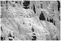 Wide frozen waterfall called Weeping Wall in early season. Banff National Park, Canadian Rockies, Alberta, Canada ( black and white)