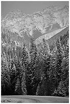 Snowy forest and mountains in storm light seen from the road. Banff National Park, Canadian Rockies, Alberta, Canada (black and white)
