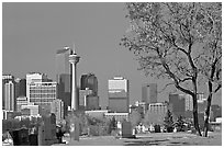 Calgary skyline seen from the cemetery in winter. Calgary, Alberta, Canada (black and white)