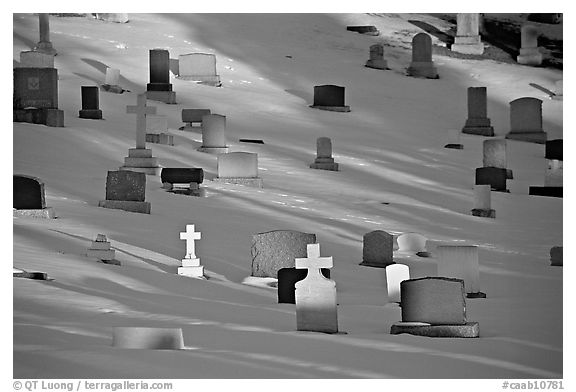 Tombs with crosses in snow. Calgary, Alberta, Canada (black and white)