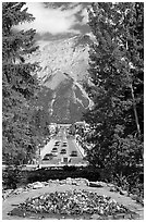 Banff Avenue seen from Cascade Gardens, mid-day. Banff National Park, Canadian Rockies, Alberta, Canada ( black and white)
