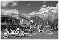 Horse carriage on Banff avenue. Banff National Park, Canadian Rockies, Alberta, Canada ( black and white)