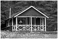 Cabin in forest with interior lights. Banff National Park, Canadian Rockies, Alberta, Canada ( black and white)