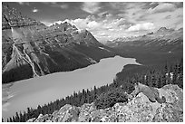 Marmot overlooking Peyto Lake, mid-day. Banff National Park, Canadian Rockies, Alberta, Canada (black and white)
