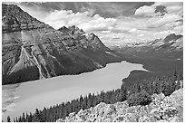 Peyto Lake, with waters colored turquoise by glacial sediments, mid-day. Banff National Park, Canadian Rockies, Alberta, Canada (black and white)