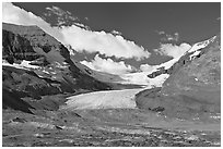 Athabasca Glacier flowing out of the Columbia Icefield, morning. Jasper National Park, Canadian Rockies, Alberta, Canada ( black and white)