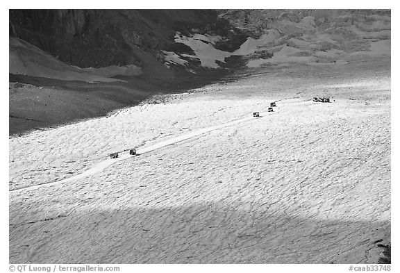 Distant view of snowcoaches transporting tourists on the Athabasca Glacier. Jasper National Park, Canadian Rockies, Alberta, Canada (black and white)