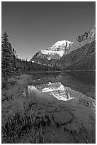 Mt Edith Cavell reflected in Cavell Lake, sunrise. Jasper National Park, Canadian Rockies, Alberta, Canada ( black and white)