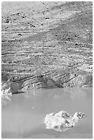Iceberg, Cavell Pond, and Cavell Glacier. Jasper National Park, Canadian Rockies, Alberta, Canada (black and white)