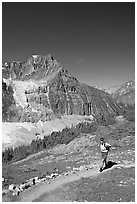 Hiker on a trail below Angel Glacier. Jasper National Park, Canadian Rockies, Alberta, Canada ( black and white)
