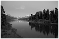 Maligne River outlet, row of evergreens, and  Maligne River, blue dusk. Jasper National Park, Canadian Rockies, Alberta, Canada (black and white)