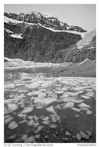 Cavell Pond, with the face of Mt Edith Cavell looming above, sunrise. Jasper National Park, Canadian Rockies, Alberta, Canada (black and white)