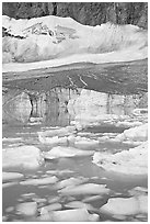 Icebergs in glacial pond and Cavell Glacier. Jasper National Park, Canadian Rockies, Alberta, Canada (black and white)