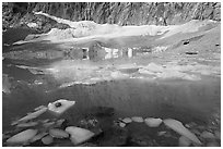 Icebergs, reflections, and Cavell Glacier. Jasper National Park, Canadian Rockies, Alberta, Canada ( black and white)