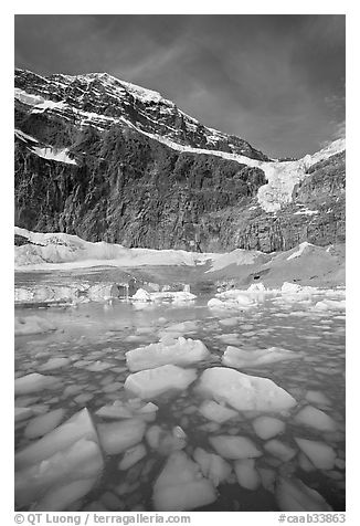 Iceberg-filled  Glacial Pond, and steep face of Mt Edith Cavell, early morning. Jasper National Park, Canadian Rockies, Alberta, Canada (black and white)