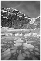 Iceberg-filled  Glacial Pond, and steep face of Mt Edith Cavell, early morning. Jasper National Park, Canadian Rockies, Alberta, Canada ( black and white)