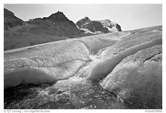 Glacial stream at the toe of Athabasca Glacier. Jasper National Park, Canadian Rockies, Alberta, Canada (black and white)