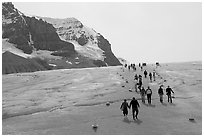 Visitors in a marked area of Athabasca Glacier. Jasper National Park, Canadian Rockies, Alberta, Canada ( black and white)
