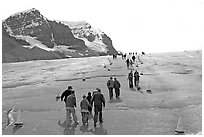 Tourists and families on Athabasca Glacier. Jasper National Park, Canadian Rockies, Alberta, Canada ( black and white)