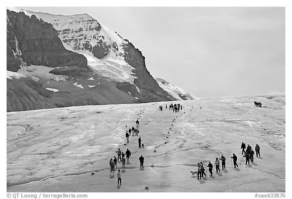 Groups of people amongst glacier and peaks. Jasper National Park, Canadian Rockies, Alberta, Canada (black and white)
