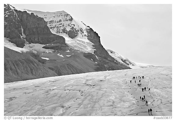 Toe of Athabasca Glacier with visitors in delimited area. Jasper National Park, Canadian Rockies, Alberta, Canada (black and white)