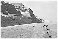Toe of Athabasca Glacier with tourists in delimited area. Jasper National Park, Canadian Rockies, Alberta, Canada ( black and white)