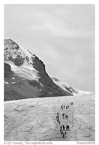 Athabasca Glacier with people in delimited area. Jasper National Park, Canadian Rockies, Alberta, Canada (black and white)