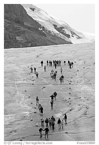 People in delimited area at the toe of Athabasca Glacier. Jasper National Park, Canadian Rockies, Alberta, Canada (black and white)