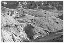 Hills and badlands, morning, Dinosaur Provincial Park. Alberta, Canada ( black and white)