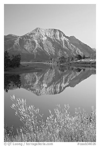 Vimy Peak and reflection in Middle Waterton Lake, sunrise. Waterton Lakes National Park, Alberta, Canada (black and white)