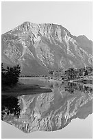 Mountain and reflection in Middle Waterton Lake, sunrise. Waterton Lakes National Park, Alberta, Canada ( black and white)