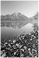 Pebbles, Middle Waterton Lake, and Vimy Peak, early morning. Waterton Lakes National Park, Alberta, Canada ( black and white)
