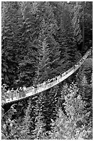 Capilano suspension bridge with tourists. Vancouver, British Columbia, Canada (black and white)