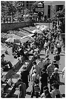 Tourists and art exhibitors on the quay of inner harbour. Victoria, British Columbia, Canada (black and white)