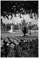Parliament framed by leaves and flowers. Victoria, British Columbia, Canada (black and white)