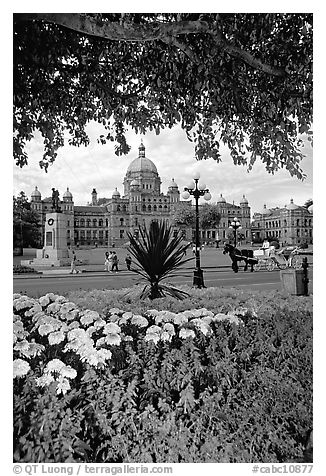 Legislature and horse carriage framed by leaves and flowers. Victoria, British Columbia, Canada