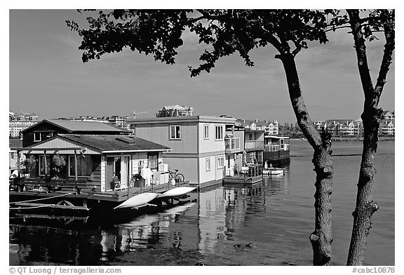 Houseboats. Victoria, British Columbia, Canada (black and white)