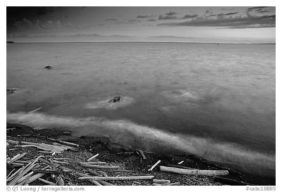 Beach with driftwood, and Olympic Mountains across the Juan de Fuca Strait. Victoria, British Columbia, Canada (black and white)